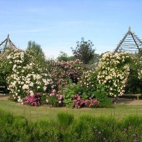 Les jardins de Roquelin et les roses © Les Jardins de Roquelin - S.Chassine