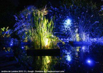 Enkele tips om van het Internationale tuinfestival 2018 te genieten